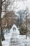 Snowfall over ile aux Cygnes in Paris royalty free stock images