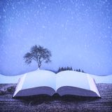 Snowfall on the pages of an open book royalty free stock photo