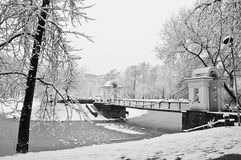 Snowfall in the park. Black and white Royalty Free Stock Photos
