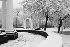 Snowfall in the park. Black and white Royalty Free Stock Photography