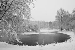 Snowfall in the park. Black and white Stock Photos