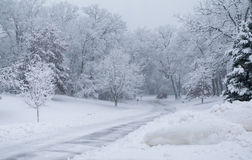 Snowfall in park, snow plow Royalty Free Stock Photography