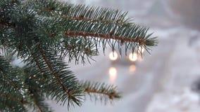 snowfall Rami dell'abete coperti di neve e di gocce L'automobile va sulla strada video d archivio