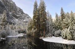 Snowfall reflected Stock Images