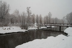 Snowfall on the river Stock Photos