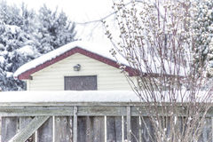 Snowfall on rustic country shed and wooden fence, peaceful winte Stock Image