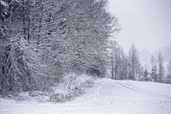 Snowfall and sleet on winter road. Ice snowy road. Winter snowst. Orm. Black ice and blizzard Stock Photo