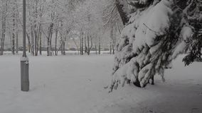 Snowfall. Snow clearance, christmas weather white year stock video footage