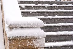 Snowfall in the southern city. Seldom happens Royalty Free Stock Images