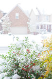Snowfall on a street in an american town, view fro Royalty Free Stock Photo