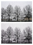 Snowfall in the village. Trees in winter time. Collage 2 images. Royalty Free Stock Image