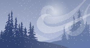 Snowfall with Wind Stock Image