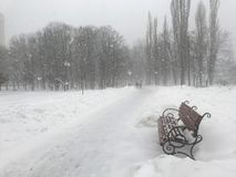 Snowfall in the winter park. A lonely bench in the park. By the path Royalty Free Stock Photography