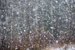 snowfall Wizerunek śnieżna miecielica zdjęcie royalty free