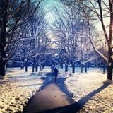 Snowfallenweg Stock Foto
