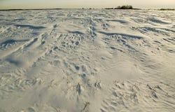 Snowfied. Lizenzfreie Stockbilder