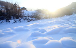 snowfield Fotografia de Stock