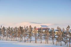 snowfield стоковые фото