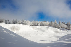The snowfield Stock Images