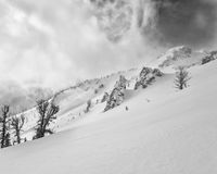 Snowfield som leder till det albright maximumet Arkivbilder