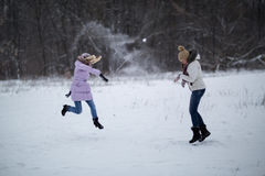 Snowfight Royalty Free Stock Photography