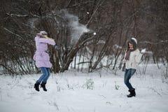 Snowfight photographie stock libre de droits