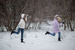 Snowfight Stock Image
