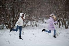 Snowfight image stock