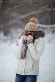 Snowfight Stock Images