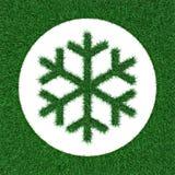 Snowflake εικονιδίων από τη χλόη Στοκ φωτογραφίες με δικαίωμα ελεύθερης χρήσης