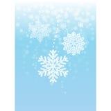 Snowflake διακοσμήσεις Στοκ Εικόνες
