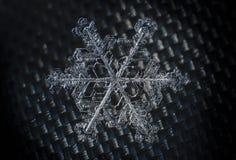 Snowflake μακρο συμμετρία κινηματογραφήσεων σε πρώτο πλάνο παγωμένη στοκ εικόνα