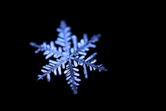 Snowflake στη μαύρη κινηματογράφηση σε πρώτο πλάνο υποβάθρου Στοκ φωτογραφίες με δικαίωμα ελεύθερης χρήσης