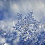 Snowflake φαντασία κρυστάλλου Στοκ φωτογραφία με δικαίωμα ελεύθερης χρήσης