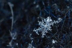 Snowflake φυσικός μακρο πυροβολισμός κινηματογραφήσεων σε πρώτο πλάνο στοκ φωτογραφίες