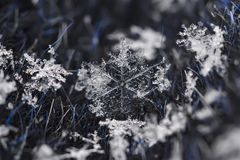 Snowflake φυσικός μακρο πυροβολισμός κινηματογραφήσεων σε πρώτο πλάνο στοκ φωτογραφία με δικαίωμα ελεύθερης χρήσης