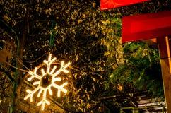 Snowflake φως διακοσμήσεων Χριστουγέννων Στοκ εικόνες με δικαίωμα ελεύθερης χρήσης