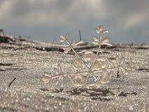 snowflake Imagem de Stock Royalty Free