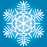 The snowflake Royalty Free Stock Photo