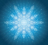Snowflake. Stock Images