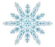 Snowflake. Stock Photo