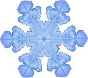 snowflake Royaltyfri Bild