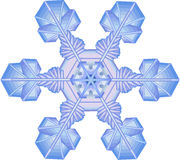 Snowflake Royalty Free Stock Images