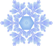Snowflake. Drawing of a crystal of a snowflake Royalty Free Stock Images