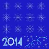 Snowflake 2014 Στοκ Εικόνες