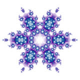 Snowflake Royalty Free Stock Photos