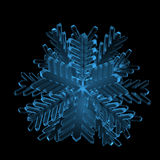 Snowflake (3D xray blue) Stock Photography