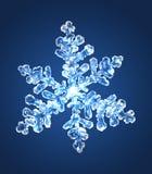 Snowflake 5 Arkivbilder