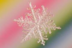 snowflake Imagens de Stock Royalty Free