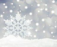 Snowflake Στοκ εικόνα με δικαίωμα ελεύθερης χρήσης